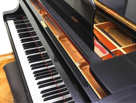 Piano Keys of a Grand Piano