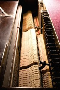 Piano hammers of an acoustic piano