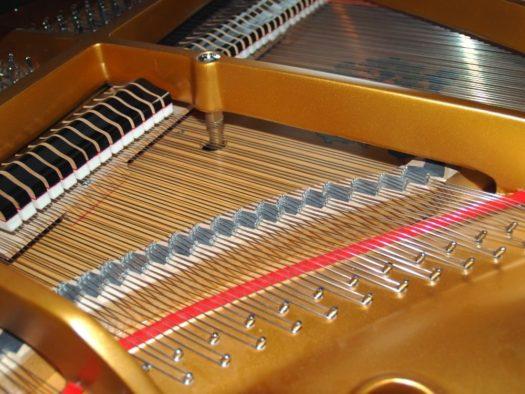 Piano Strings of a Grand Piano
